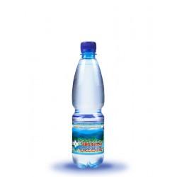 Вода питна Шаянська Джерельна Шаянські мінеральні води негазована 0.5 л
